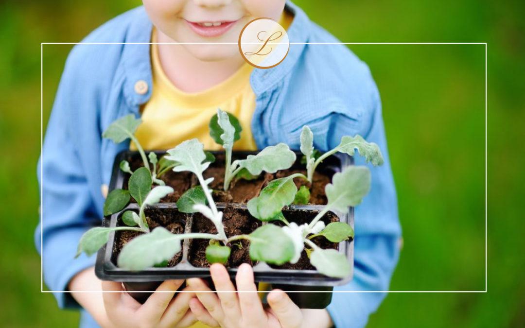 Un huerto en tu jardín es lo que necesitas